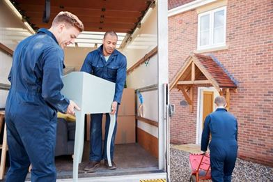 removal company workers